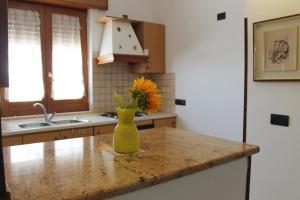Casa Paloma ospitalità diffusa amalficoastincoming, Ferienwohnungen  Agerola - big - 53