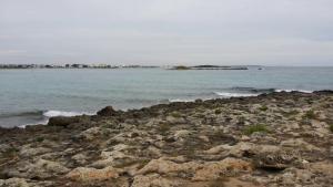 Salsedine, Affittacamere  Porto Cesareo - big - 7