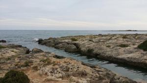 Salsedine, Affittacamere  Porto Cesareo - big - 8
