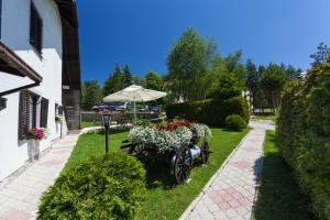 Vila Aleksandra, Apartments  Zlatibor - big - 44