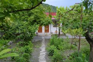 Ludwig Guesthouse, Penziony  Lagodekhi - big - 18