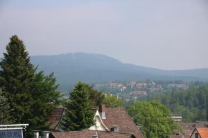 Ferienresidenz Wurmbergblick, Апартаменты  Браунлаге - big - 41