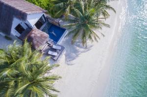 Bandos Maldives, Resort  Città di Malé - big - 22