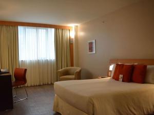 Novotel Rio De Janeiro Barra Da Tijuca, Hotely  Rio de Janeiro - big - 12