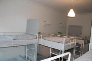 Bunk Bed in 10-Bed Dormitory Room