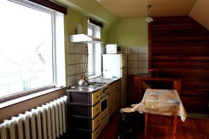 Rybka, Appartamenti  Odessa - big - 29