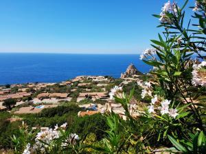 Casa Vacanze Altura - AbcAlberghi.com