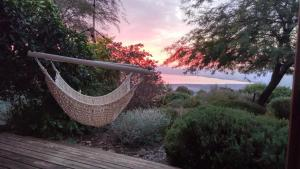 Island of Green, Лоджи  Ma'ale Gamla - big - 1