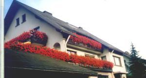 Haus Hubertus, Affittacamere  Winterberg - big - 30