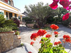 Casa Vacanze un sogno al mare - AbcAlberghi.com