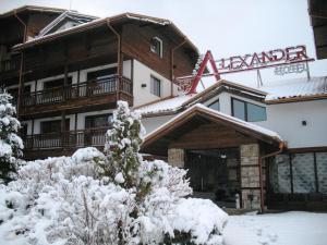 Alexander Hotel - Bansko
