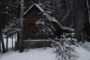 Гостиницы рядом с Парком флоры и фауны Роев ручей в Красноярске