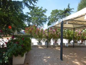 Al Casolare, Hotels  Corinaldo - big - 29
