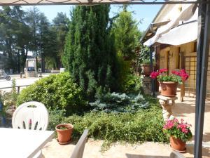 Al Casolare, Hotels  Corinaldo - big - 23