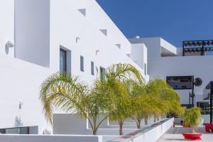 Migjorn Ibiza Suites & Spa (24 of 154)