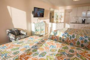 321 - Island Inn, Appartamenti  Port Richey - big - 8