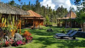 Volcano Mountain Retreat, Bed & Breakfast  Fern Acres - big - 20