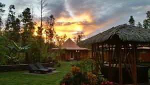Volcano Mountain Retreat, Bed & Breakfast  Fern Acres - big - 17