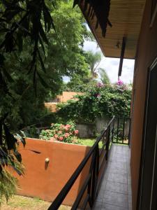 Apartamentos Los Bambues, Atenas