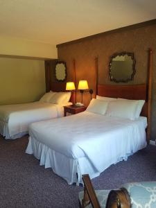 Deluxe Double Bed Room