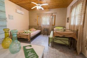 Villa Dimitris Apartments & Bungalows, Apartments  Lefkada Town - big - 9