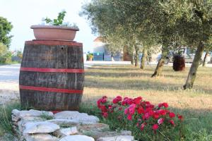 Ghira Winery Apartment