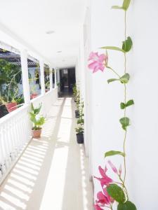 Hotel Santa Cruz, Hotel  Cartagena de Indias - big - 40