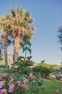 Hotel Ideal, Hotels  Ischia - big - 27