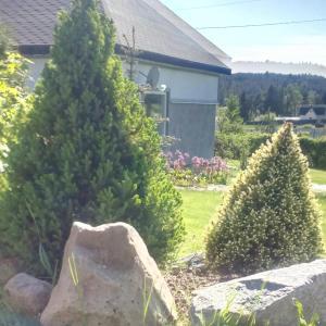 Riekkalansaari Cottage, Country houses  Sortavala - big - 26
