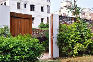International Travellers' Hostel, Hostels  Varanasi - big - 6
