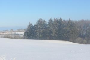 Komfortable Ferienwohnung in Waabs - Ostsee - Damp - Eckernförde, Ferienwohnungen  Waabs - big - 10