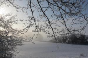 Ferienwohnung-inWaabs-Ostsee-Damp-Eckernfoerde, Apartmány  Waabs - big - 7