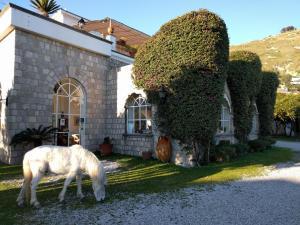 Tenuta Villa Tara - AbcAlberghi.com