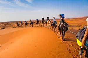 Camel Bivouac Merzouga, Campeggi di lusso  Merzouga - big - 77