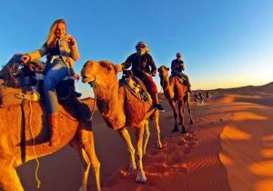 Camel Bivouac Merzouga, Campeggi di lusso  Merzouga - big - 63