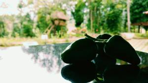 Palkadavu Warium Villa, Prázdninové domy  Mananthavady - big - 29