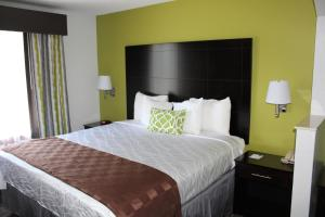 Best Western Magnolia Inn and Suites, Hotely  Ladson - big - 15