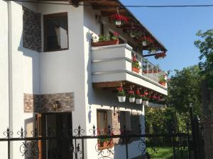 Luxury apartment Turda
