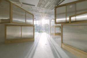 Ciudadanos de China continental - Litera en habitación compartida masculina