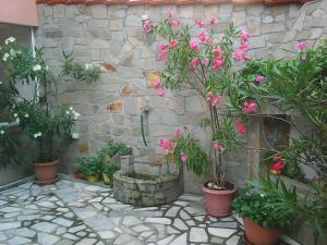 Stedi Guest House, Penziony  Chernomorets - big - 31