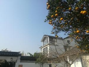 Pure-Land Villa, Privatzimmer  Suzhou - big - 40
