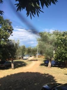 B&B Skadar Lake Murici, Bed and Breakfasts  Bar - big - 5