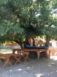 B&B Skadar Lake Murici, Bed & Breakfasts  Bar - big - 23