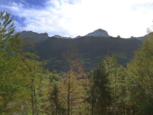 Chalet Chalet Val Rose, Дома для отпуска  Arveyes - big - 17