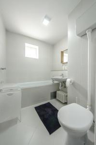 Danvisual Apartment 4, Appartamenti  Novi Sad - big - 10