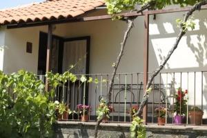Casa vacanza Etna Evergreen - AbcAlberghi.com