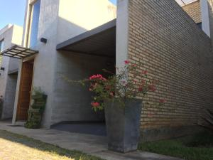 Madre Natura, Apartments  Asuncion - big - 54