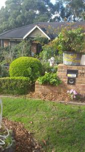 Terrigal Secret Garden