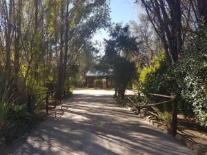 Elands River Lodge, Lodge  Machadodorp - big - 45