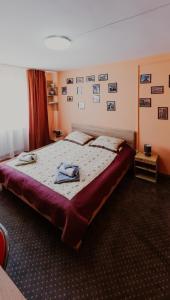 Studio Isa, Appartamenti  Sibiu - big - 36